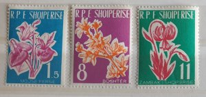 Albania Albanian Flowers Postage Stamps M/M Condition 1961