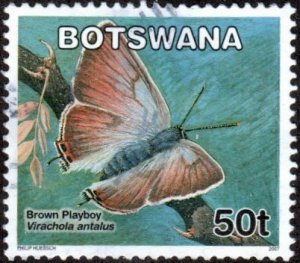 Botswana 847 - Used - 50t Brown Playboy Butterfly (2007) (1)