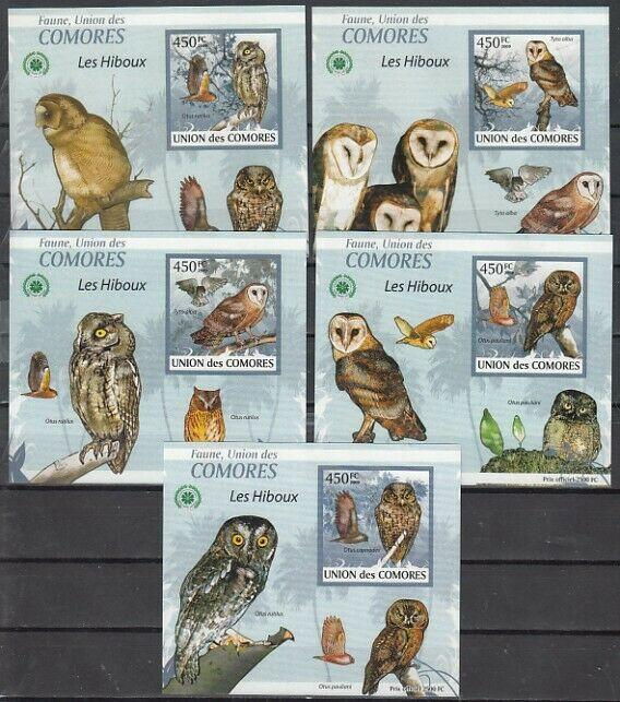 Comoros Is., 2009 issue. Owls issue as 5 Deluxe s/sheets.
