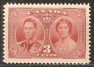 Canada #237 Mint Never Hinged F-VF (ST1247)