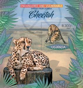 UGANDA 2012 SHEET CHEETAHS FELINES GUEPARDS WILD CATS WILDLIFE ugn12402b