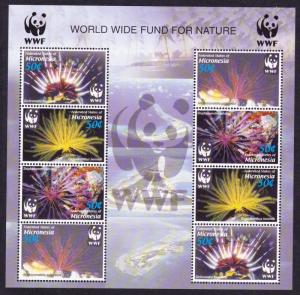 Micronesia WWF Feather Stars Sheetlet of 2 sets SG#1347-1350 MI#1674-1677 SC#659