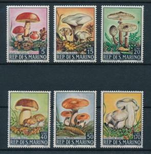 [97758] San Marino 1967 Mushrooms Pilze  MNH