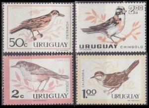 1963 Uruguay 955-958 * Birds 7,00 €
