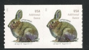 5545 Brush Rabbit 20cent Additional Oz Coil Pair Mint/nh FREE SHIPPING