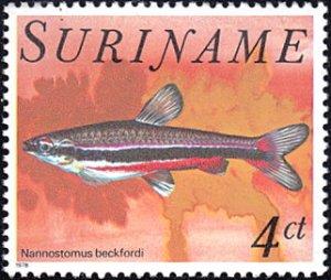 Surinam # 507 mnh ~ 4¢ Fish - Nannostomus beckfordi