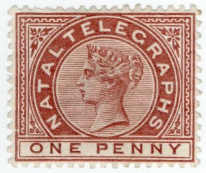 (I.B) Natal Telegraphs : 1d Red-Brown