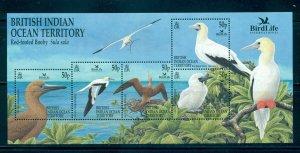 B.I.O.T. - Sc# 244. 2002 Birds. Souv. Sheet. MNH $14.50.