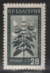 BULGARIA Scott 838 Medicinal plant stamp mint no gum, similar centering