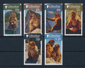 [30243] Gibraltar 2011 Endangered Animals Mammals Mountain Monkeys MNH