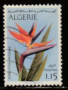 Algérie   499  (O)  1973