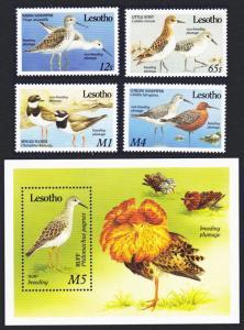 Lesotho Migrant Birds 4v+MS SG#910-MS914 SC#726-730