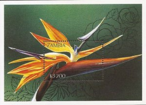 Zambia - 1998 Bird of Paradise - Souvenir Sheet MNH - Scott #723