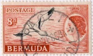 BERMUDA - 1958 - SG153a 8d Cancelled PAGET Single Circle Date Stamp