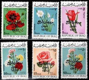 IRAQ Scott 538-543 complete 1970 flower set