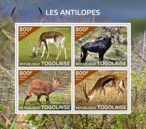 TOGO - 2019 - Antelopes - Perf 4v Sheet  - M N H