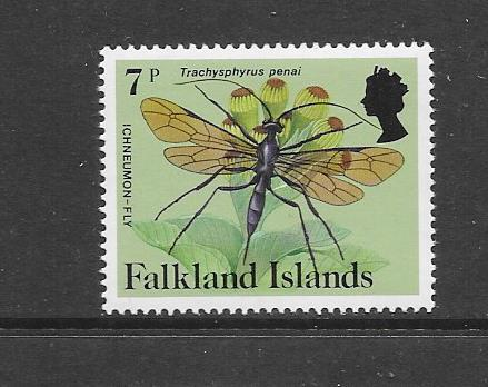 INSECTS - FALKLAND ISLANDS-#393  ICHNEUMON FLY   MNH