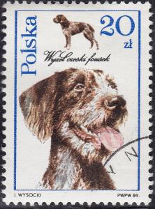 Poland 2902 USED - 1989 Dogs Czech Fousek Pointer