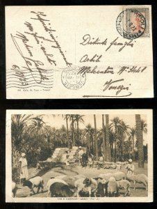 d398 - ITALY Colonies LIBYA 1923 Single Use on Picture Postcard. Sheep Shepherds