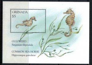 Grenada #2479* NH  CV $4.50 Seahorse Souvenir sheet
