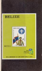 BELIZE 644 SOUVENIR SHEET MINT 2014 SCOTT CATALOGUE VALUE $27.50