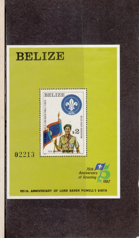 BELIZE 644 SOUVENIR SHEET MINT 2014 SCOTT CATALOGUE VALUE $27.50