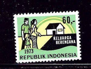 Indonesia 858 MH 1973 issue