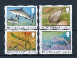 [40601] Montserrat 1996 Marine Life Shark Prawn Sea mouse MNH