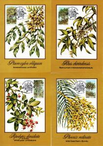 Ciskei - 1984 Indigenous Trees Maxi Card Set SG 52-55