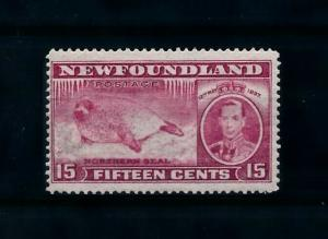 [99828] Netherlands 1937 Marine Life Seal From set MNH