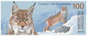 Stamps of Kyrgyzstan 2018. - Red Book of Kyrgyzstan - Turkestan lynx. Stamp.