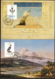 Liechtenstein 1994 Europa CEPT Discoveries and Inventions 2 Maxi Cards FDC