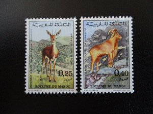 Morocco #268-69 Mint Never Hinged (L7H4) WDWPhilatelic