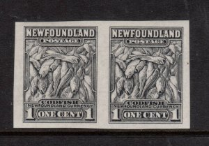 Newfoundland #253a Extra Fine Never Hinged Imperf Pair