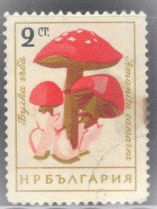 BULGARIA SCOTT# 1190 USED  2L 1961  MUSHROONS  SEE SCAN