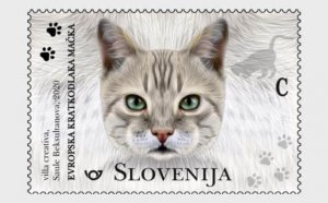 Slovenia 2020 The Domestic Cats 3v MNH