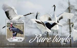 MALDIVES - 2019 - Rare Birds  - Perf Souv Sheet - MNH