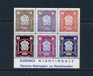 6 VINTAGE FLORENCE NIGHTINGALE HEMSIRE MEKTEPLERI POSTER STAMPS  (L725) TURKISH
