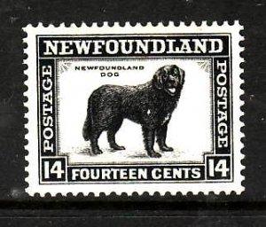 Newfoundland-Sc #194-unused,og, NH 14c Dog-id5-1932-7-