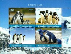 Madagascar 2018 Penguin Birds Antarctica Animals 4v MNH S/S. (#065)
