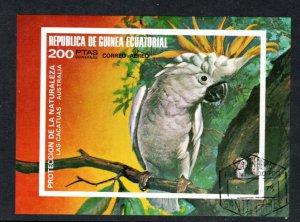 EQUATORIAL GUINEA 77122 AIR MAIL S/S Parrot