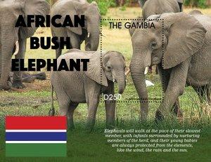 2021/04 - GAMBIA - ELEPHANTS             1V  complet set    MNH ** T