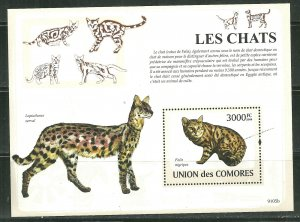 Comoro Islands MNH S/S Cats MEOW!!! MEOW!!!! 2009