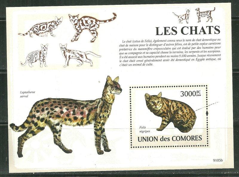 Comoro Islands MNH S/S Cats 2009 MEOW!!!!!!!!