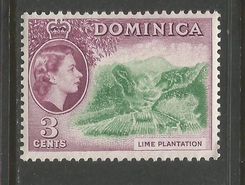 DOMINICA 145 MNH LIME V902-10