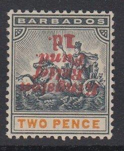 BARBADOS, Scott B2b, MLH