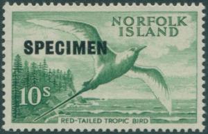 Norfolk Island 1960 SG36s 10/- Red-tailed Tropic Bird SPECIMEN top left MLH
