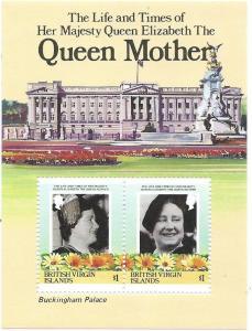 British Virgin Islands #517  S/ Sheet of 2 (MNH) CV$2.25