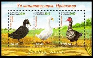 2019 Kyrgyzstan 973-75/B105 Ducks