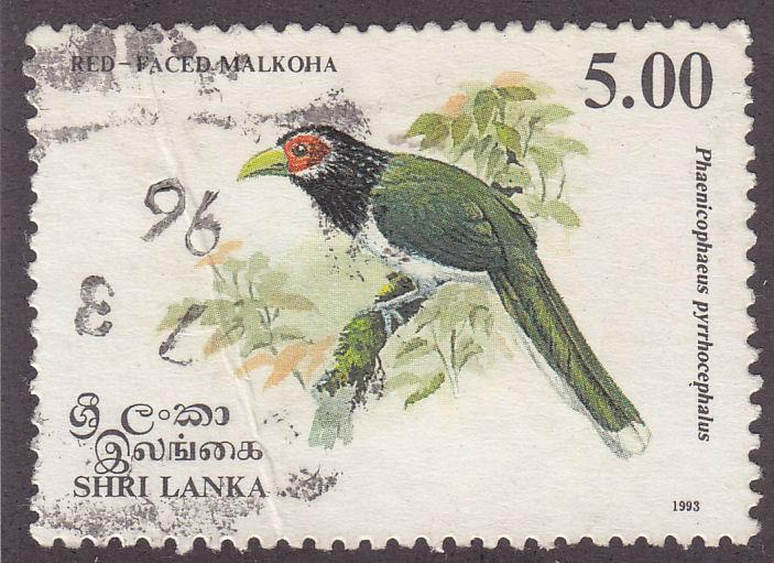 Sri Lanka 1081 Red Faced Malkoha 1993
